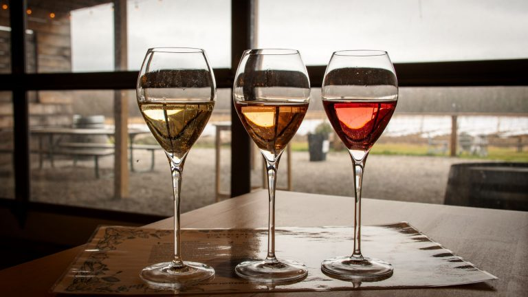 The second largest wine area in Ontario is Prince Edward County. Check out the best wineries to visit when in the area.