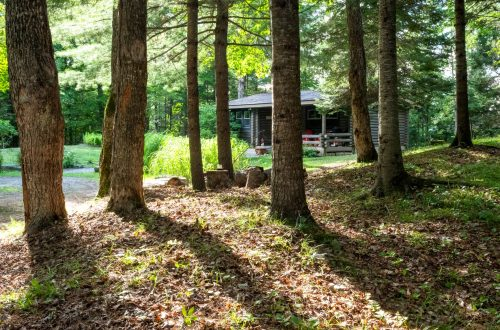 Welcome to Cranberry Cabins, a log home in Haliburton, Ontario, Canada   Escape to Cranberry Cabins   www.dreamplanexperience.com
