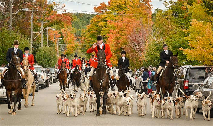 Creemore's Horses and Hounds Thanksgiving Parade | Creemore Ontario