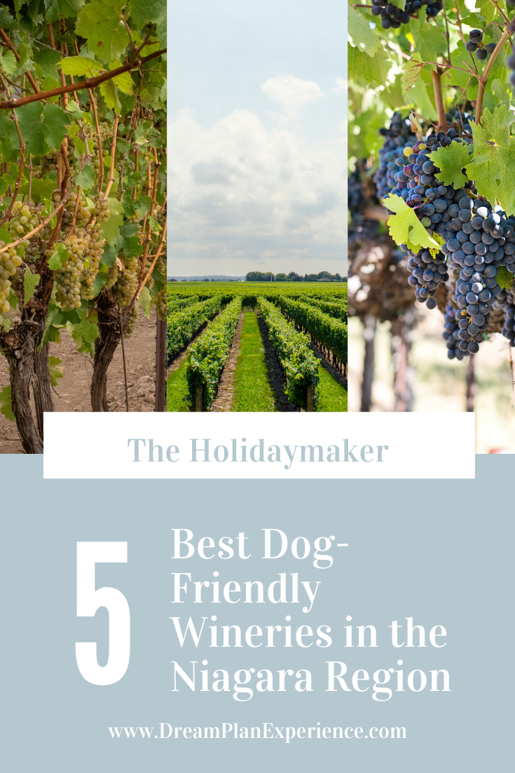 Plan to go wine tasting in the Niagara Peninsula with the Best Dog-Friendly Wineries in the Niagara Region | www.DreamPlanExperience.com