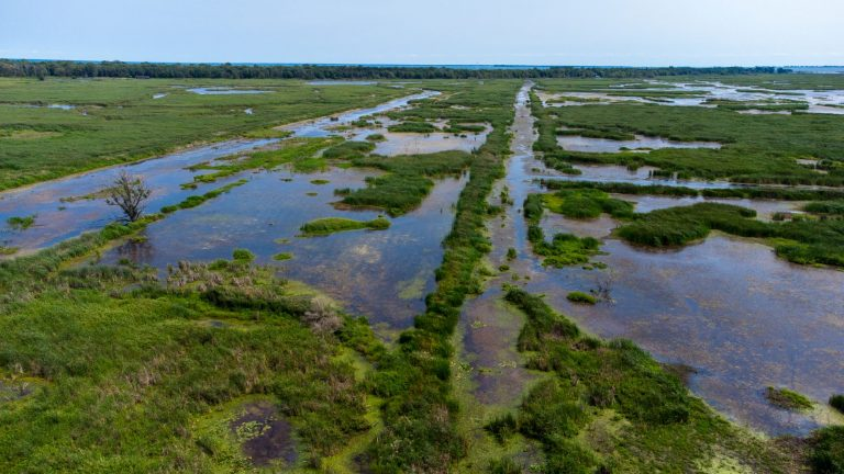 Long Point in Norfolk County, Ontario is a UNESCO Biosphere Reserve