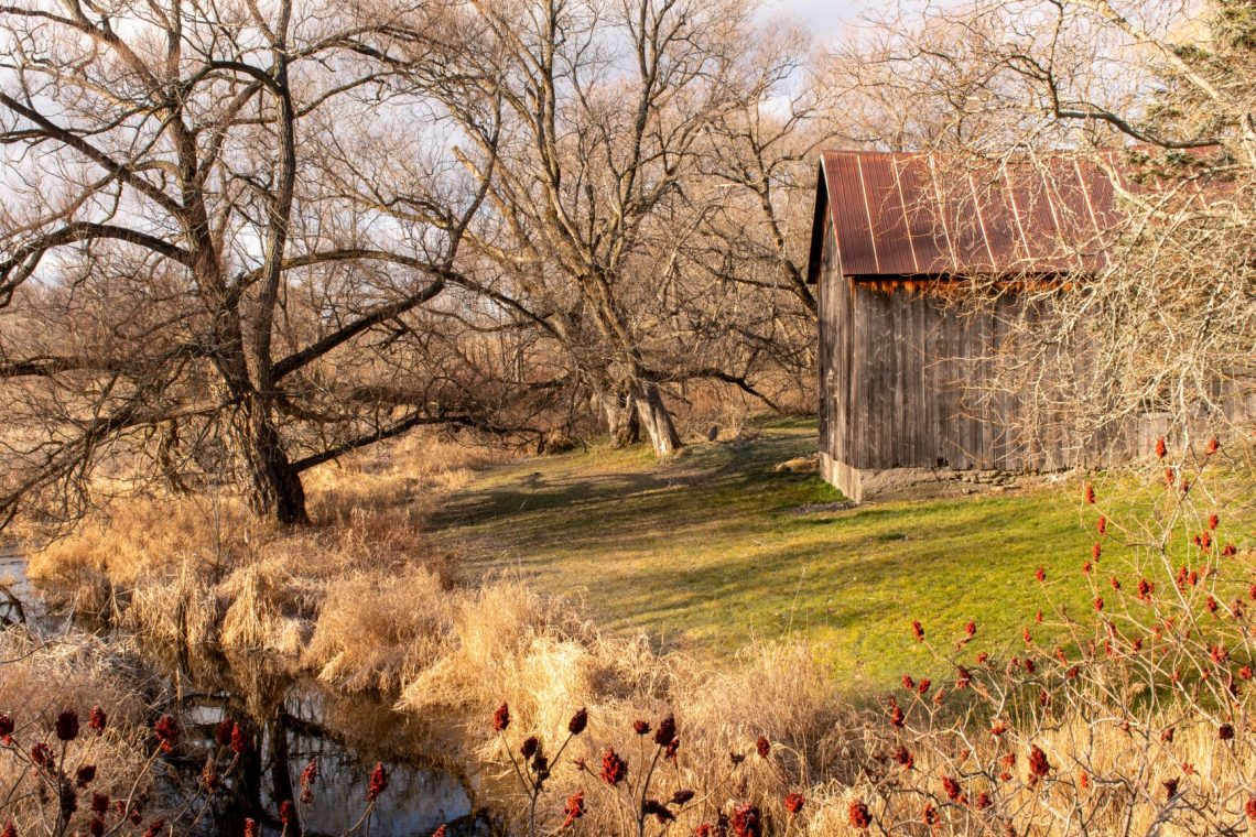 The rural and rustic landscape of Prince Edward County in Ontario. This is South Shore where farms are abundant. What to do, eat, drink while in The County.