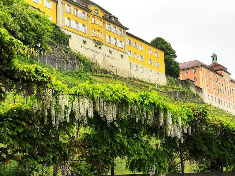 Meersburg, a must-see town in the Lake Constance region of Germany features two castles and a charming old town.