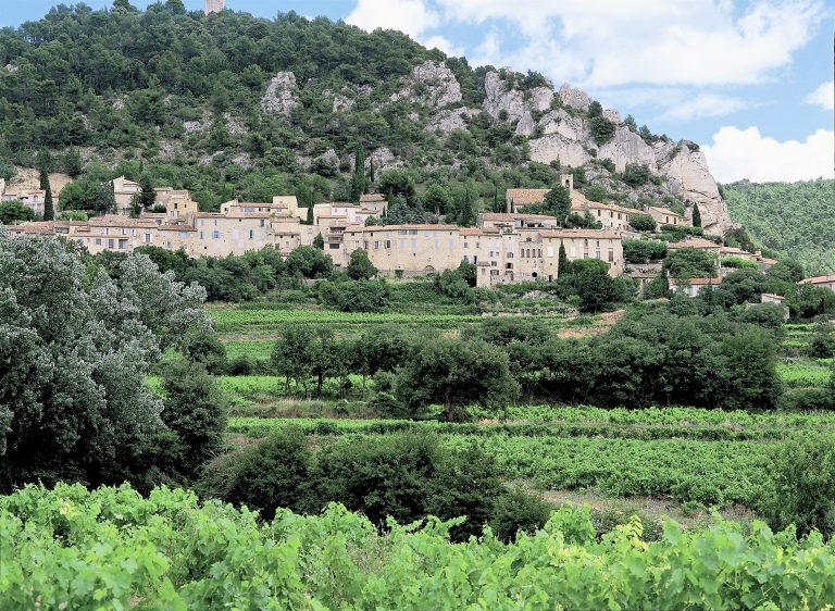 This picturesque little village is situated in the famous Côte du Rhône vineyards which is the most northern part of this area. It lies at the foot of a hill topped by the ruins of its feudal chateau. Roam the ancient medieval streets and admire the historical monuments at every turn. Be sure to visit one of the many local wineries while in this area.
